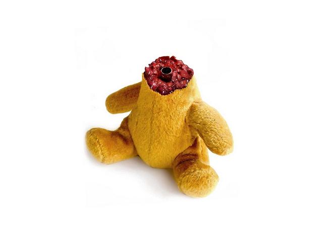 headless teddy