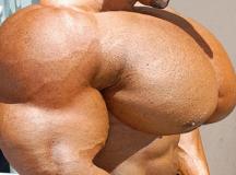 Steroid Untruths Shown !
