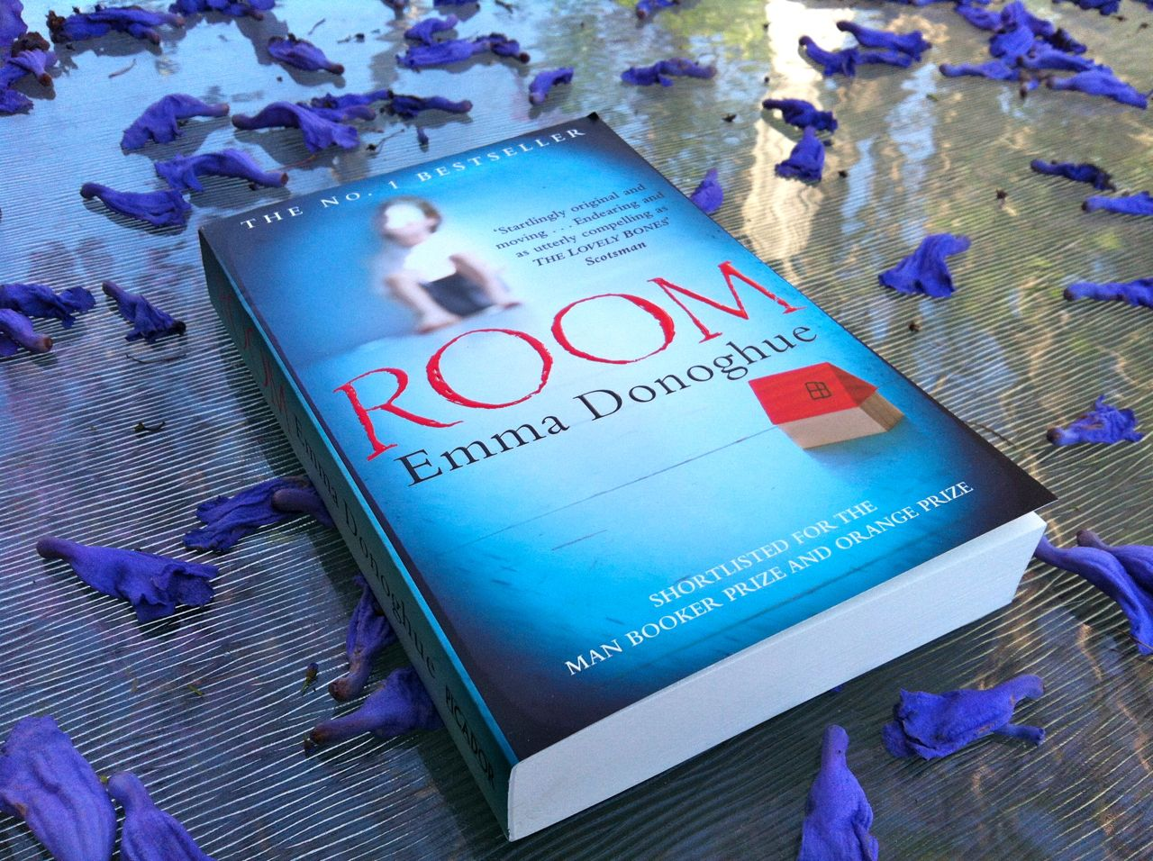 Room by Emma Donoghue and the trauma culture