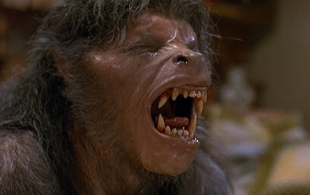 american-werewolf-in-london-an-1981-004-wolf-groan